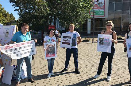 В Старом Осколе зоозащитники провели пикет